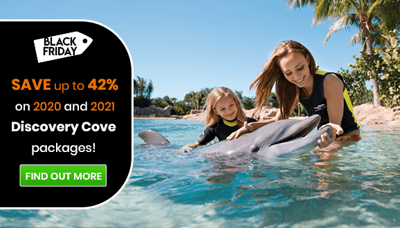 Save up to 42% on Discovery Cove Swim Packages