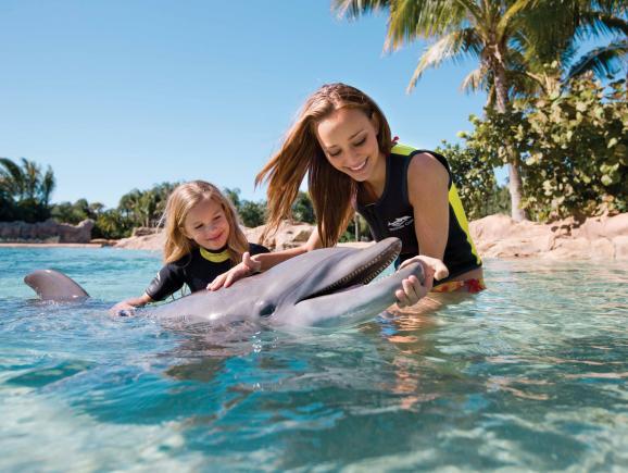 Discovery Cove® Orlando