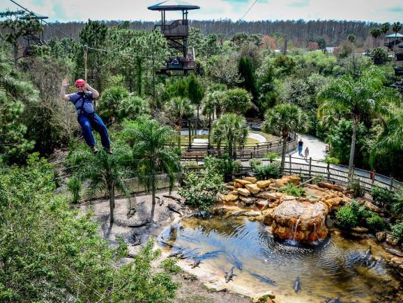 Gatorland Orlando Florida Tickets Best Prices Orlando