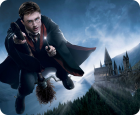 Harry Potter and the Forbidden Journey™