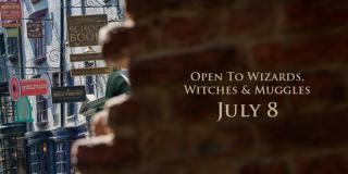 Diagon Alley Red Carpet Webcast - 18th June 2014