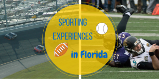 The Top Sporting Experiences in Florida