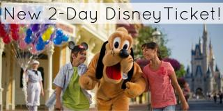 New 2 Day Disney Ticket