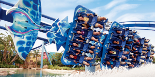 Top Tips for Visiting SeaWorld Orlando