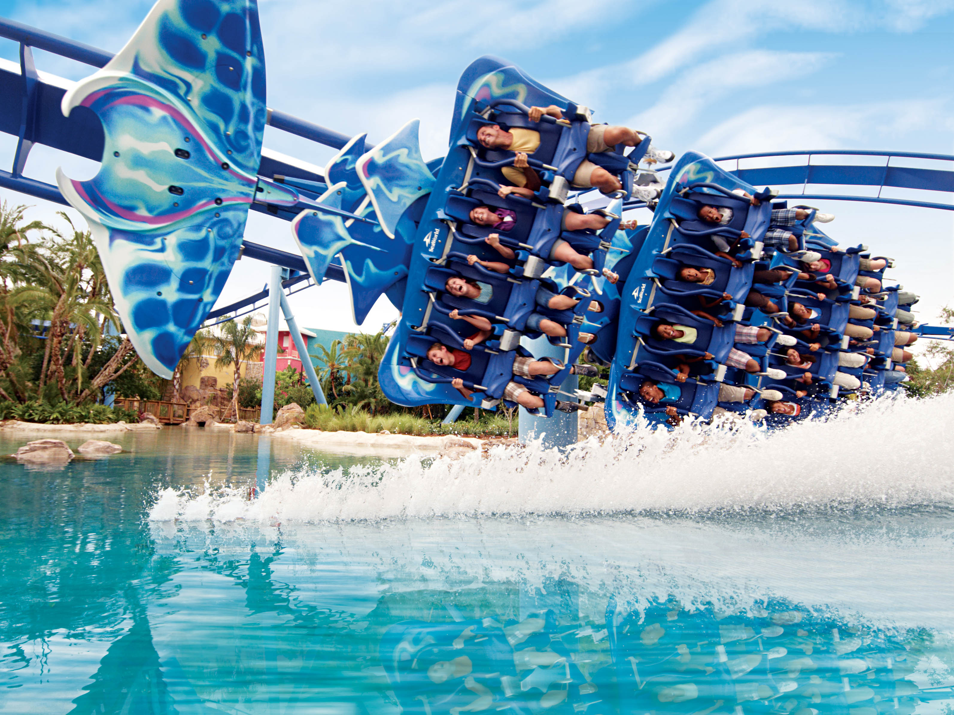 Value of the Disney Theme Park Ticket with Park Hopper Plus Option. As the Frog Family CFO, I'm always looking for the best value, so let's do the math on the Disney water parks savings .
